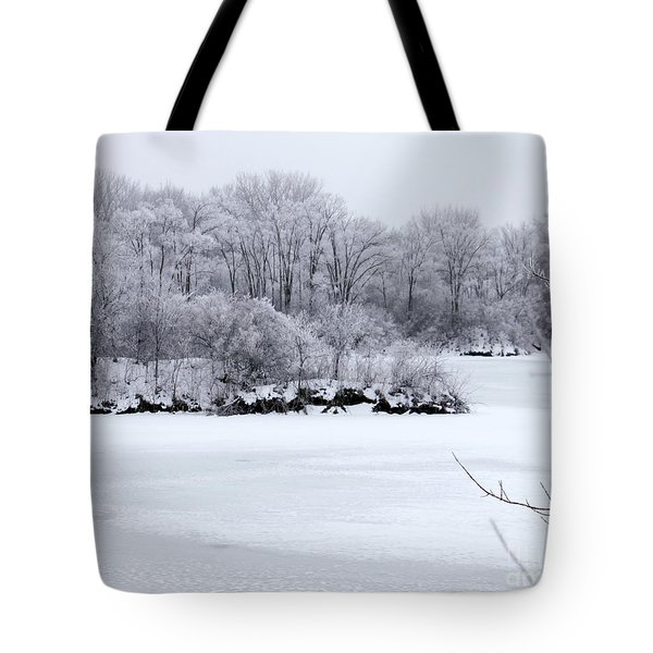 December Lake Tote Bag by Debbie Hart