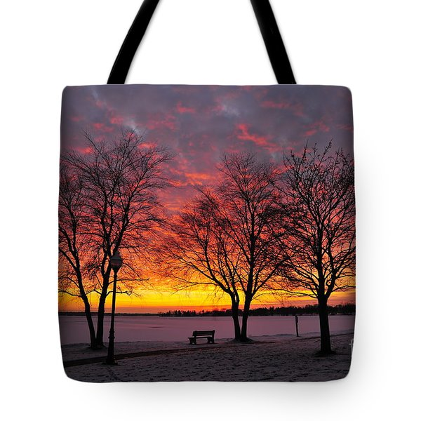 Tote Bag featuring the photograph December Sunset by Terri Gostola