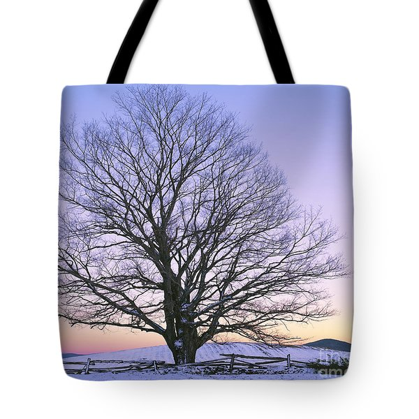 Tote Bag featuring the photograph December Twilight by Alan L Graham