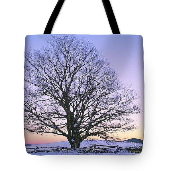 December Twilight Tote Bag