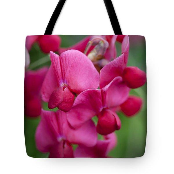 Deep Pink Sweet Pea Tote Bag