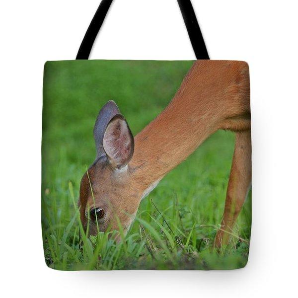 Deer 25 Tote Bag