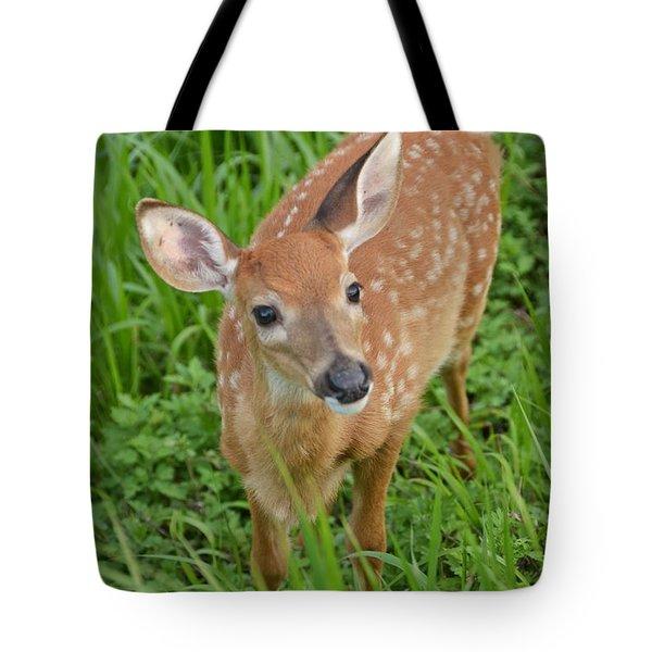 Deer 42 Tote Bag