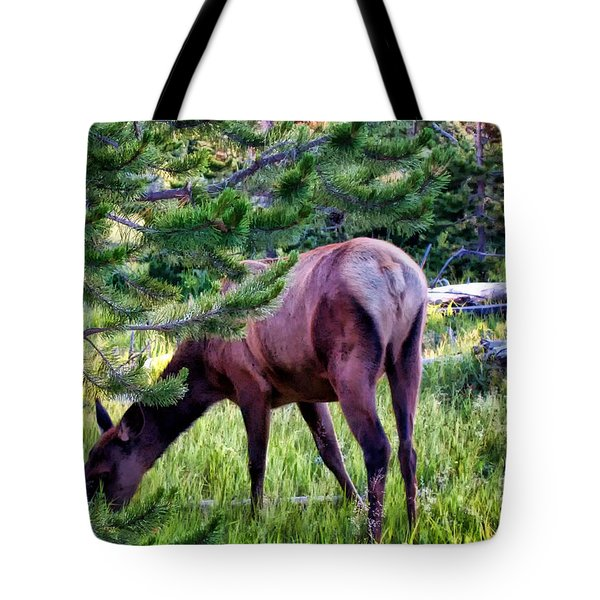 Tote Bag featuring the photograph Deer 7 by Dawn Eshelman