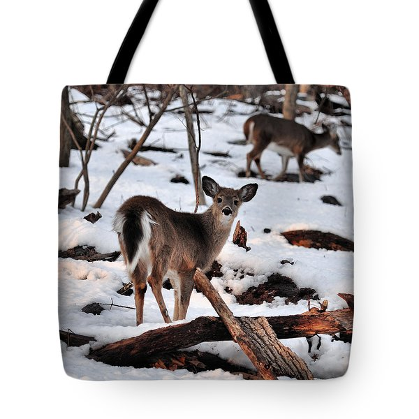 Deer And Snow Tote Bag