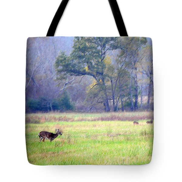 Tote Bag featuring the photograph Deer At Cades Cove by Kenny Francis