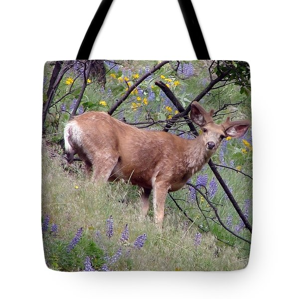 Tote Bag featuring the photograph Deer In Wildflowers by Athena Mckinzie