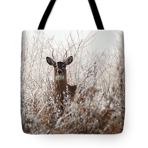 Deer In Winter Tote Bag