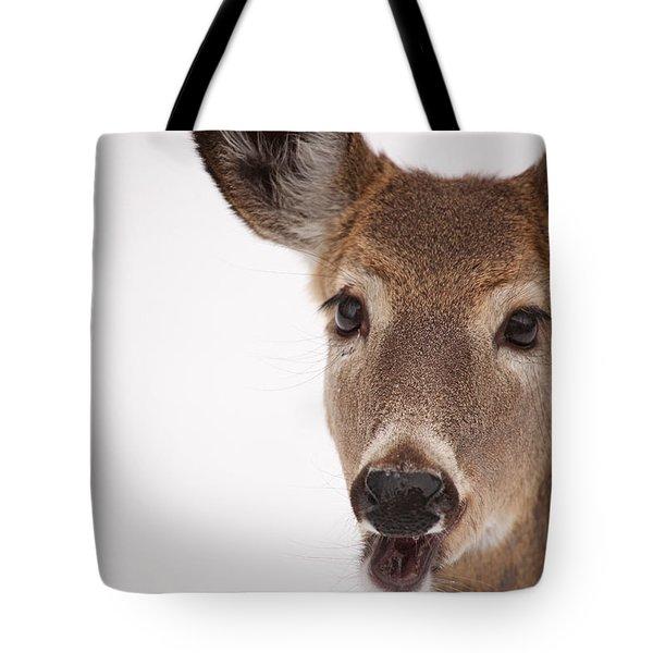 Deer Talk Tote Bag by Karol Livote