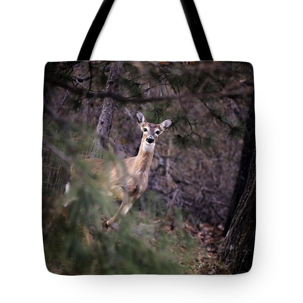 Deer's Stomping Grounds. Tote Bag