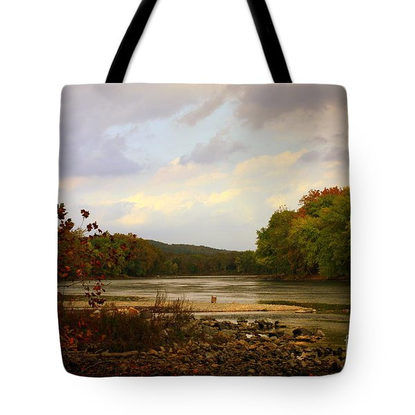 Delaware River Tote Bag