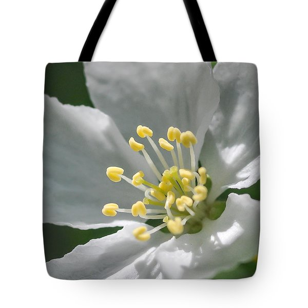 Delcate Widflower With Beautiful Stamen Tote Bag