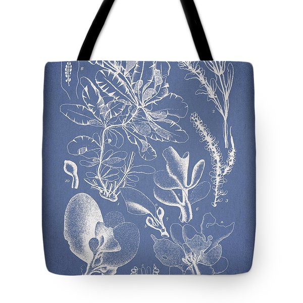 Delesseria Middendorfii Tote Bag by Aged Pixel