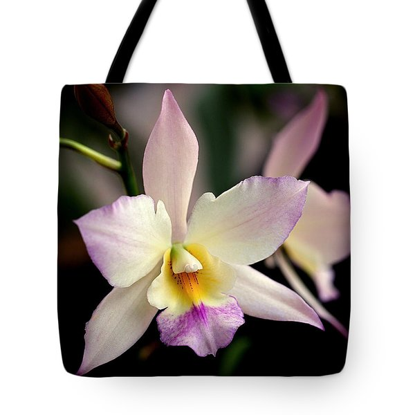 Delicate Beauty Tote Bag by Rona Black