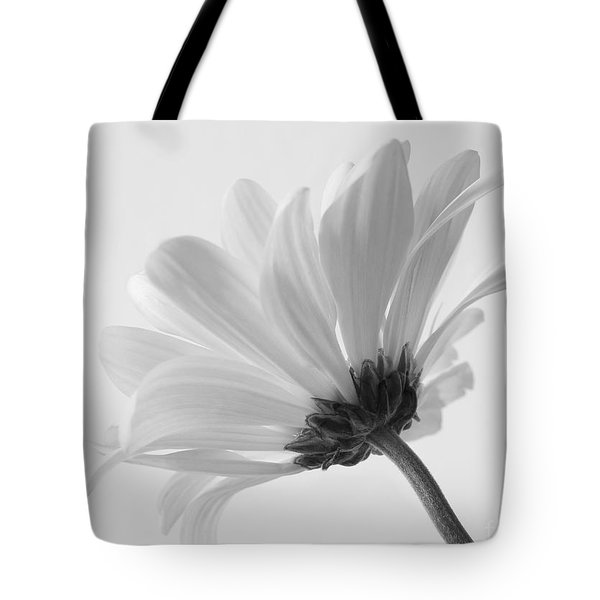 Tote Bag featuring the photograph Delicate Daisy by Anita Oakley