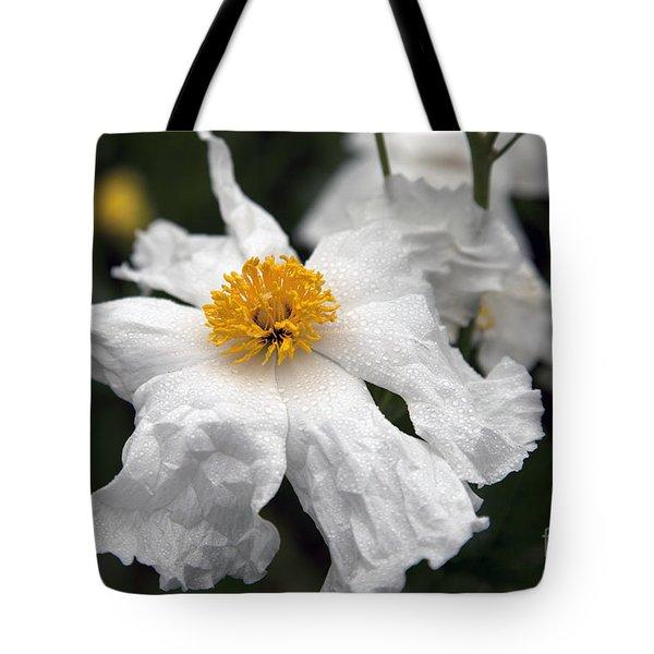 Delicate Dew Tote Bag by Amanda Barcon