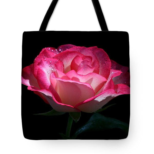 Tote Bag featuring the photograph Delicate Fountain by Doug Norkum