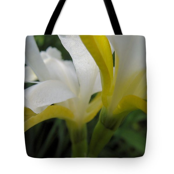 Tote Bag featuring the photograph Delicate Iris by Cheryl Hoyle