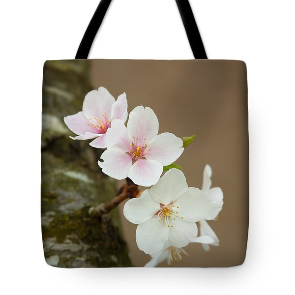Delicate Isolation Tote Bag by Theresa Johnson
