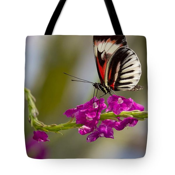 delicate Piano Key Butterfly Tote Bag