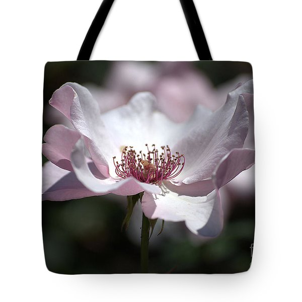 Delicate Pink Tote Bag by Sharon Elliott