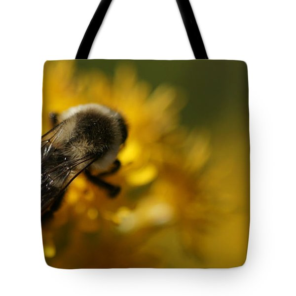 Tote Bag featuring the photograph Delicate Sensitivity by Linda Shafer