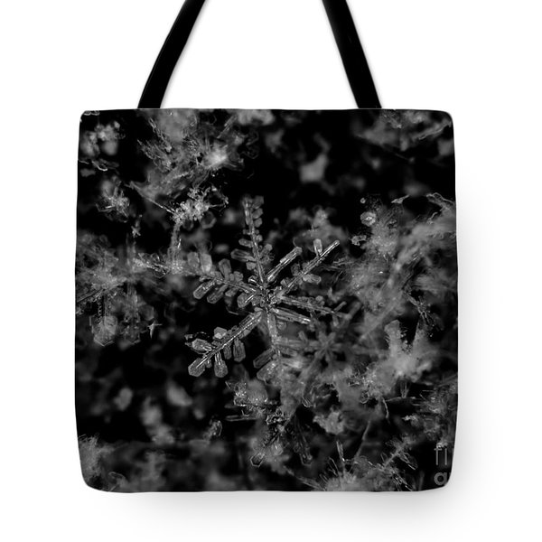 Delicate Snow Tote Bag by Cheryl Baxter
