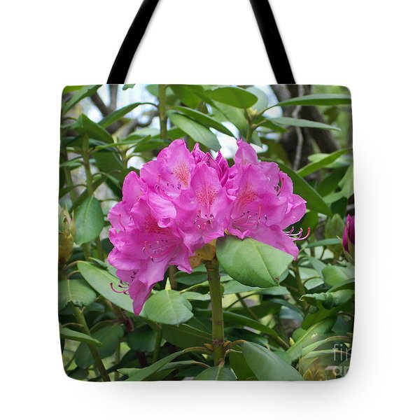 Tote Bag featuring the photograph Delicate Beauty by Roberta Byram