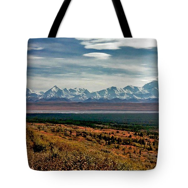 Tote Bag featuring the photograph Denali Colors by Jeremy Rhoades