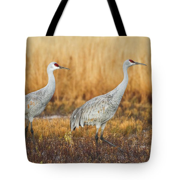 Duo For Flight Tote Bag by Ruth Jolly