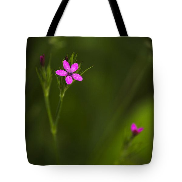 Deptford Pink Tote Bag by Christina Rollo
