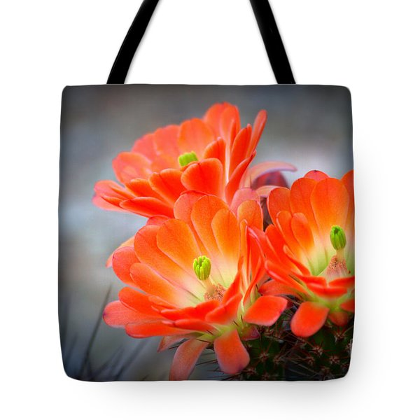 Desert Ablaze  Tote Bag by Ruth Jolly