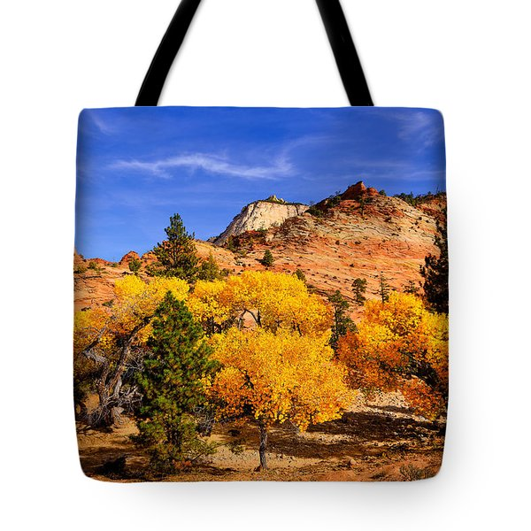 Tote Bag featuring the photograph Desert Autumn by Greg Norrell