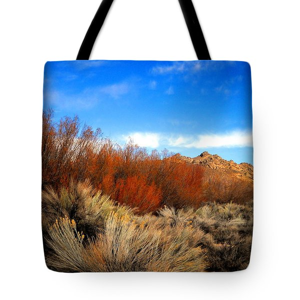 Tote Bag featuring the photograph Desert Colors by Marilyn Diaz