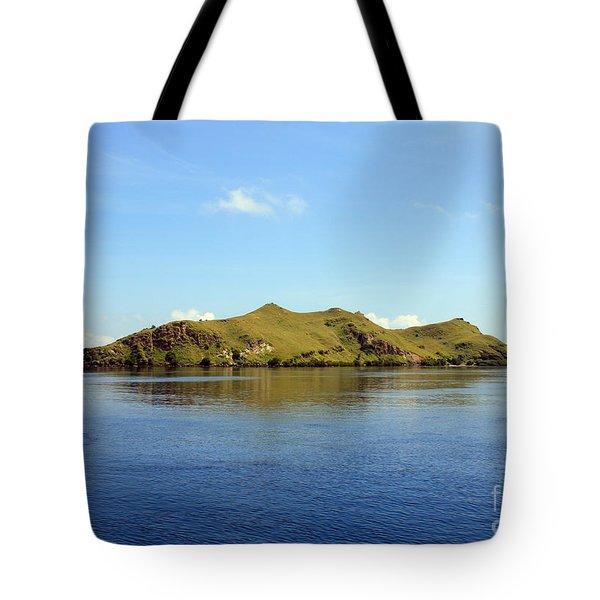 Desert Island Tote Bag by Sergey Lukashin