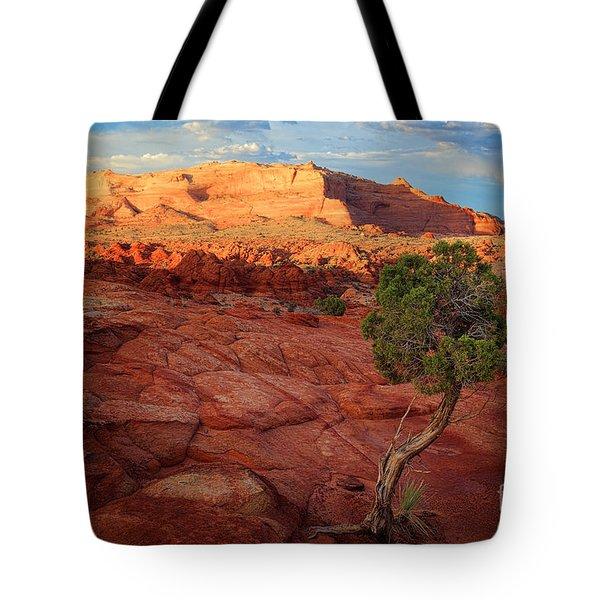 Desert Juniper Tote Bag by Inge Johnsson