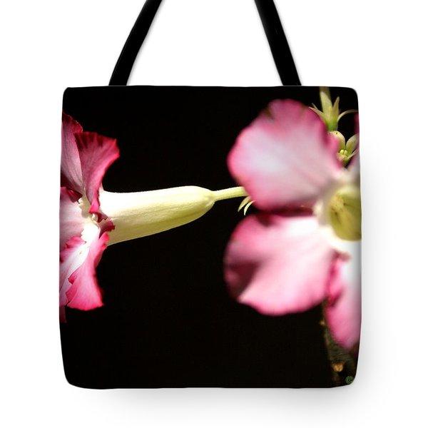 Desert Rose 1 Tote Bag