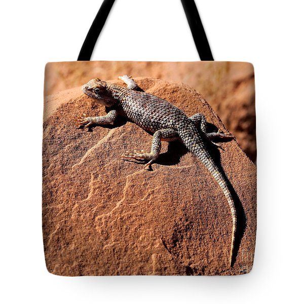 Desert Spiny Lizard Tote Bag by Marty Fancy