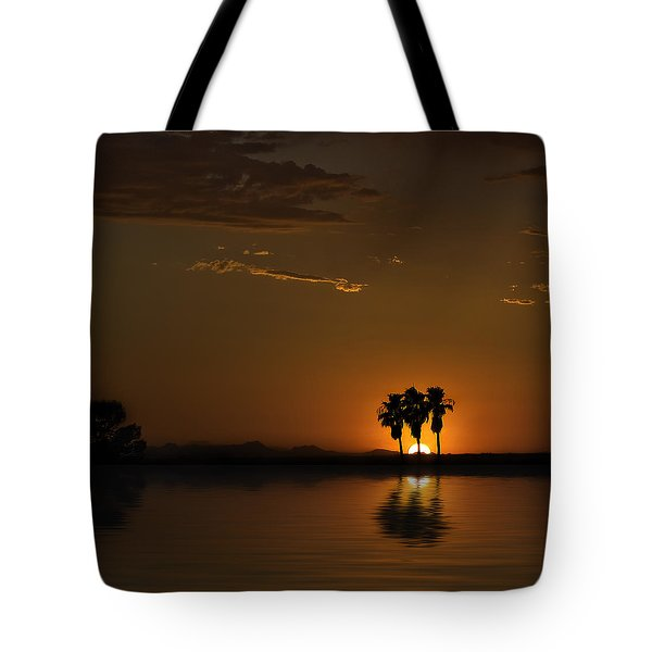 Tote Bag featuring the photograph Desert Sunset by Lynn Geoffroy