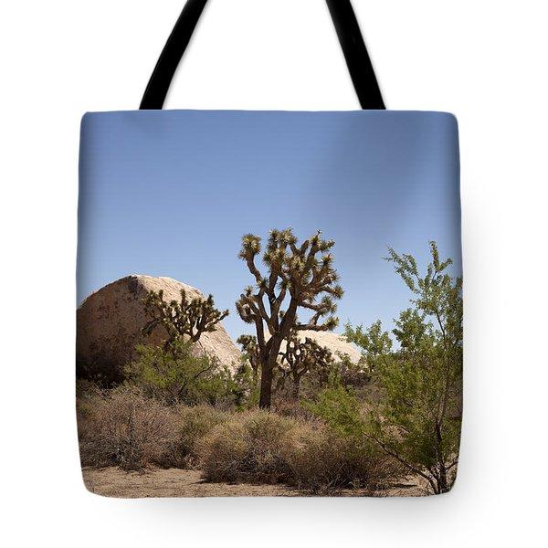 Desert Trees Tote Bag by Amanda Barcon