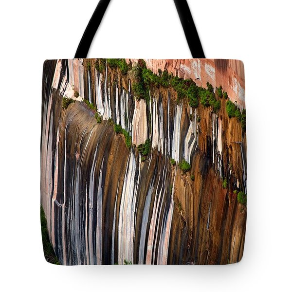 Desert Varnish Tote Bag