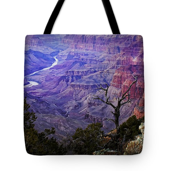 Desert View Sunset Tote Bag by Priscilla Burgers
