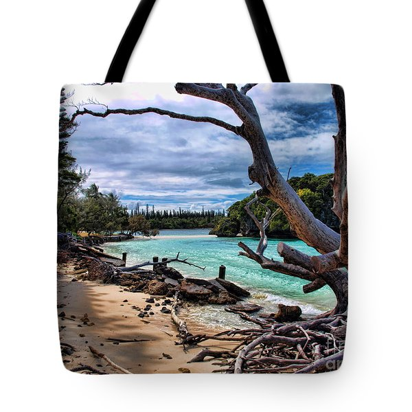 Tote Bag featuring the photograph Destruction by Trena Mara