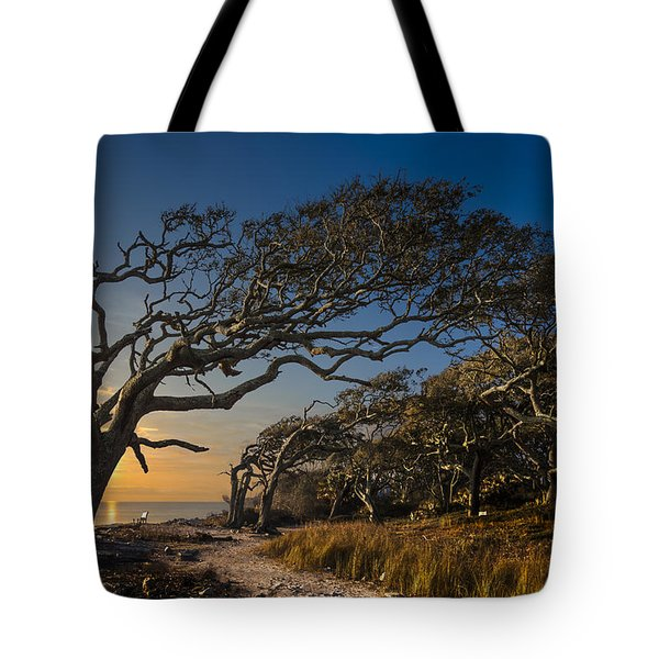 Determination Tote Bag by Debra and Dave Vanderlaan