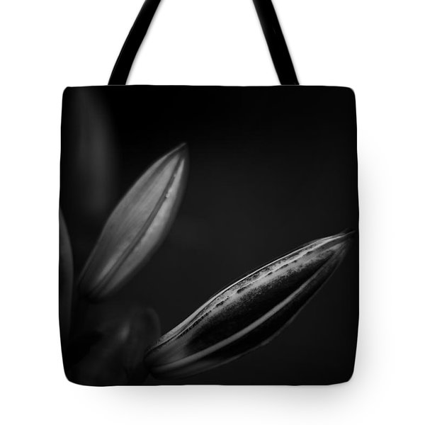 Tote Bag featuring the photograph Developing Day Lily Depth In Monochrome by Ben Shields