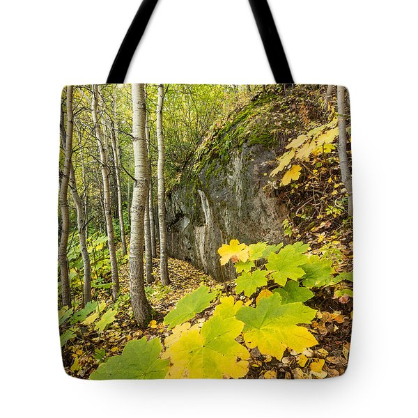 Devil's Club In Fall Tote Bag