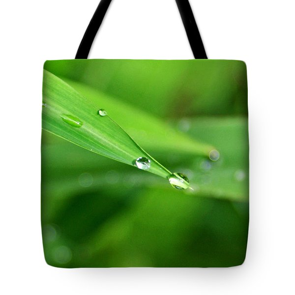 Dew Drop Tote Bag by Jean Haynes