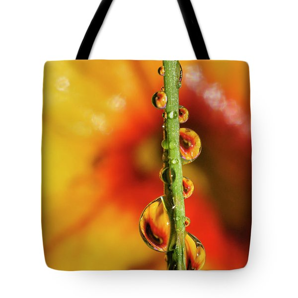 Tote Bag featuring the photograph Dew Droplet Fractals by Arthur Fix