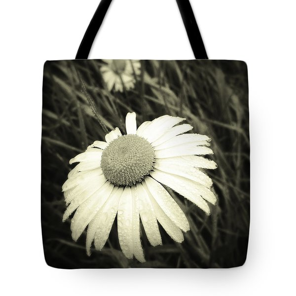 Dew Drops  Tote Bag by Les Cunliffe