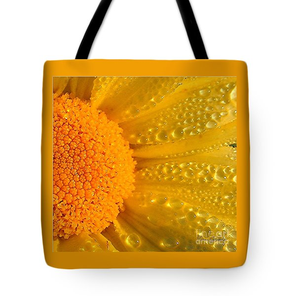 Tote Bag featuring the photograph Dew Drops On Daisy by Terri Gostola